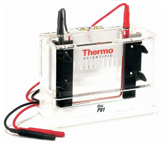 Thermo Scientific Owl P81 Single-Sided Vertical System Accessories:Electrophoresis,