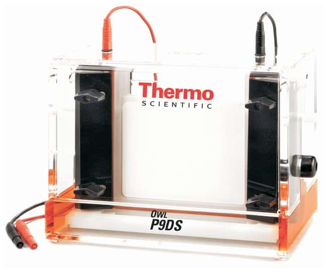 Fisherbrand P9DS Dual Gel System Side cCamps:Electrophoresis, Western Blotting