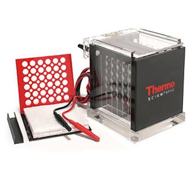 Thermo Scientific Owl VEP-2 Mini Tank Electroblotting System  Transfer