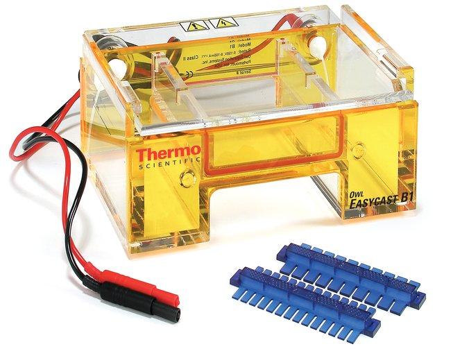Thermo Scientific™Sistemi per elettroforesi Owl™ EasyCast™ B1 Mini Gel EasyCast Thermo Scientific™Sistemi per elettroforesi Owl™ EasyCast™ B1 Mini Gel