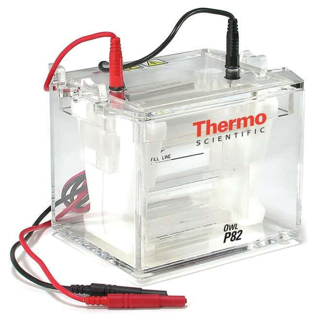 Thermo Scientific™ Owl™ P82 Dual-Gel Electrophoresis Double Sided Vertical System, 8-10 x 10cm gel, 150-300mL buffer volume Double Sided Vertical System, 8-10 x 10cm gel system, 150mL to 300mL buffer volume Vertical Gel Systems