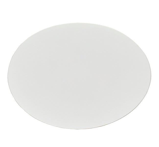 Thermo Scientific™Nalgene™ Membrane and Prefilter Disks Nylon; Pore size 0.45μm Thermo Scientific™Nalgene™ Membrane and Prefilter Disks