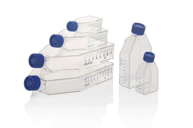 Thermo Scientific™Nunc™ EasYFlask™ Cell Culture Flasks: Laboratory Flasks Dishes, Plates and Flasks