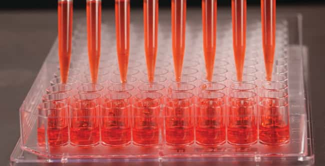 Thermo Scientific™Nunc™ Edge™ 96-Well, Non-Treated, Flat-Bottom Microplate 10/Pk., 160/Cs. Products