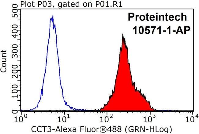 CCT3 Rabbit anti-Human, Mouse, Rat, Polyclonal, Proteintech 150 μL; Unconjugated Produkte