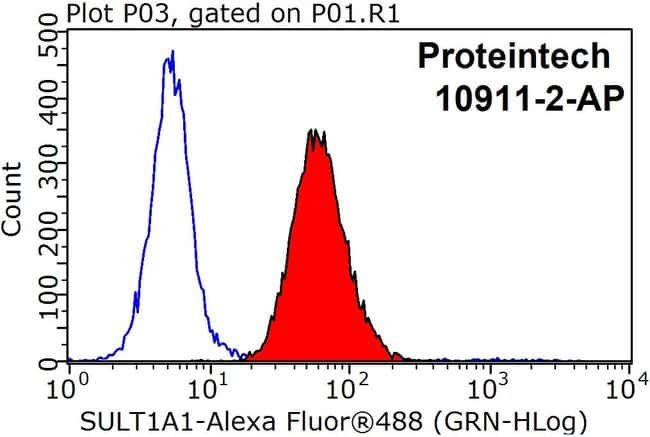 SULT1A1 Rabbit anti-Human, Mouse, Rat, Polyclonal, Proteintech 150 μL; Unconjugated Ver productos