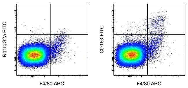 CD163 Rat anti-Mouse, FITC, Clone: TNKUPJ, eBioscience  100 µg; FITC