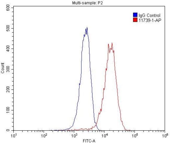 ASGR1 Rabbit anti-Human, Mouse, Rat, Polyclonal, Proteintech 20 μL; Unconjugated Ver productos