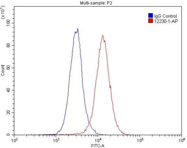 RBBP9 Rabbit anti-Human, Mouse, Rat, Polyclonal, Proteintech 20 μL; Unconjugated Ver productos