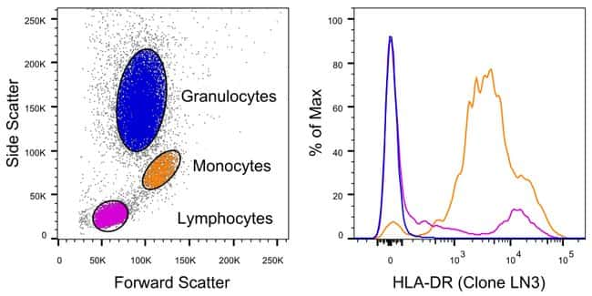 HLA-DR Mouse anti-Human, PE, Clone: LN3, eBioscience™ 25 tests; PE Primary Antibodies Hj to Hr