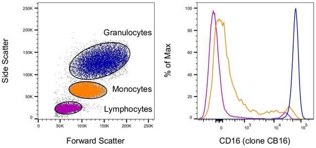 CD16 Mouse anti-Human, Biotin, Clone: eBioCB16 (CB16), eBioscience ::