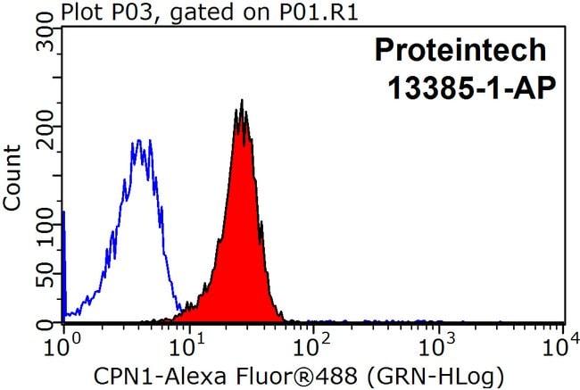 CPN1 Rabbit anti-Human, Mouse, Rat, Polyclonal, Proteintech 20 μL; Unconjugated voir les résultats