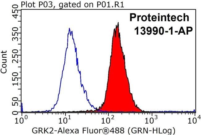 GRK2 Rabbit anti-Human, Polyclonal, Proteintech 150 μL; Unconjugated voir les résultats