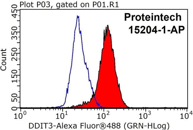 CHOP Rabbit anti-Human, Mouse, Rat, Polyclonal, Proteintech 150 μL; Unconjugated Produkte