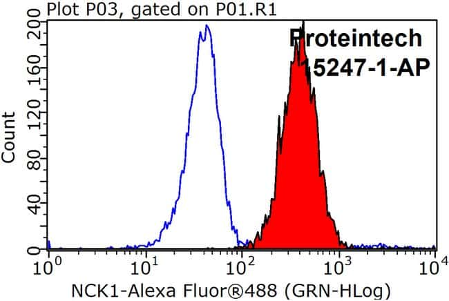 NCK1 Rabbit anti-Human, Mouse, Rat, Polyclonal, Proteintech 150 μL; Unconjugated voir les résultats