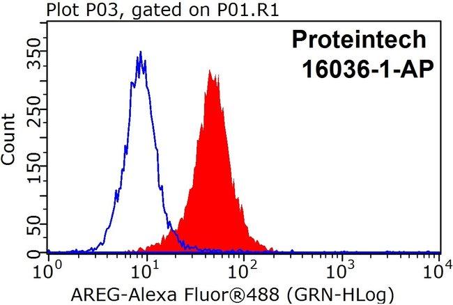 Amphiregulin Rabbit anti-Human, Polyclonal, Proteintech 150 μL; Unconjugated Produkte