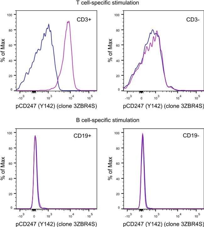 Phospho-CD247 (CD3 zeta) (Tyr142) Mouse anti-Human, Mouse, PE, Clone: 3ZBR4S,