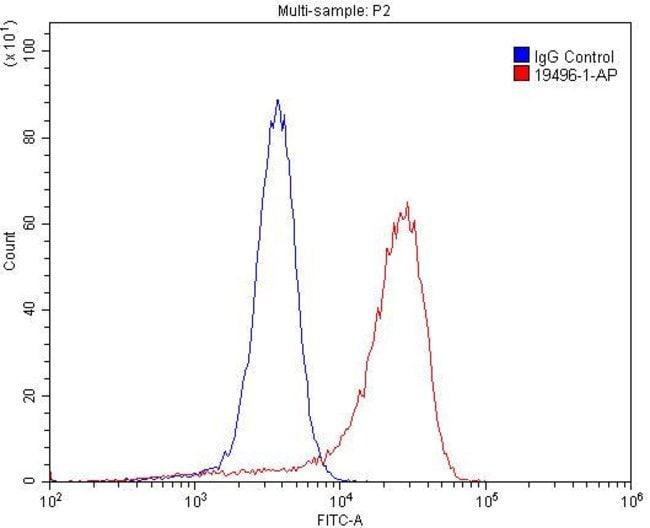 CEACAM3 Rabbit anti-Human, Polyclonal, Proteintech 20 μL; Unconjugated Ver productos