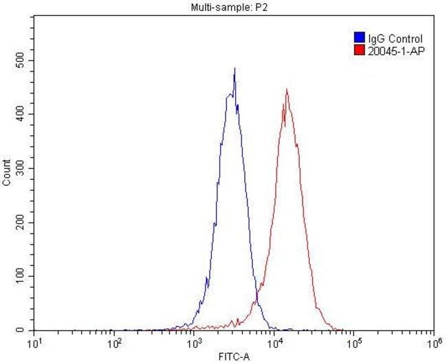 LPHN3 Rabbit anti-Human, Mouse, Rat, Polyclonal, Proteintech 20 μL; Unconjugated Ver productos