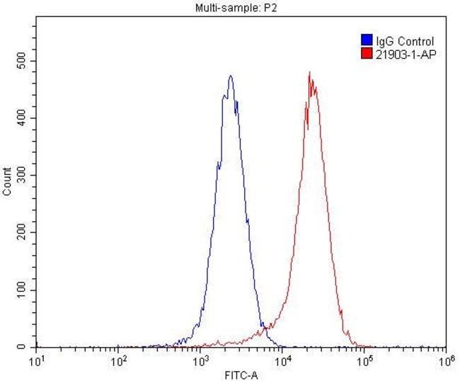 PVRL4 Rabbit anti-Human, Mouse, Polyclonal, Proteintech 150 μL; Unconjugated voir les résultats