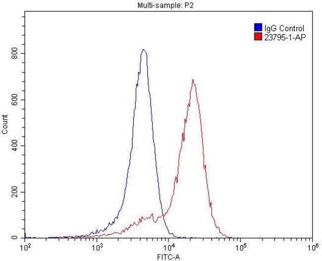 PLXNB1 Rabbit anti-Human, Mouse, Polyclonal, Proteintech 150 μL; Unconjugated Ver productos