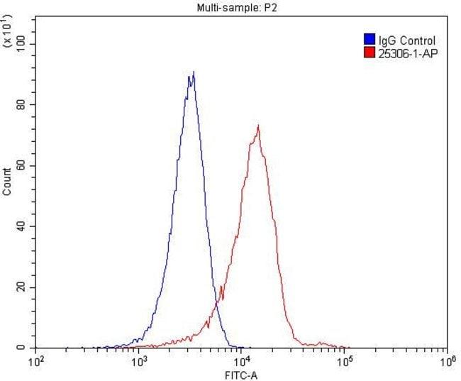 F2RL3 Rabbit anti-Human, Mouse, Polyclonal, Proteintech 20 μL; Unconjugated Produkte