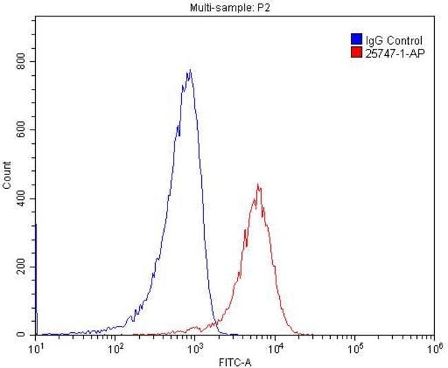 CD68 Rabbit anti-Human, Mouse, Polyclonal, Proteintech 20 μL; Unconjugated voir les résultats