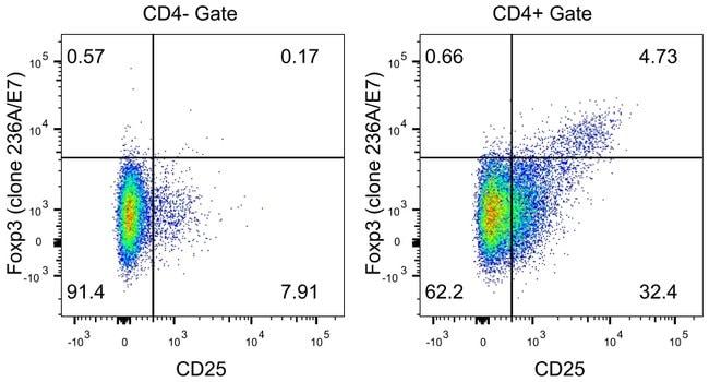 FOXP3 Mouse anti-Human, Non-human primate, Rhesus Monkey, eFluor® 570, Clone: 236A/E7, eBioscience™: Primary Antibodies - Alphabetical Primary Antibodies