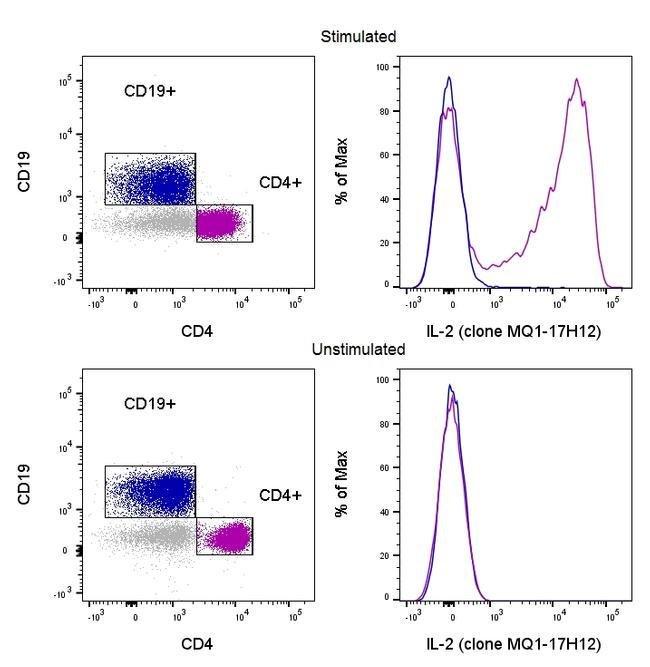 IL-2 Rat anti-Human, eFluor™ 450, Clone: MQ1-17H12, eBioscience™ 25 Tests; eFluor™ 450 IL-2 Rat anti-Human, eFluor™ 450, Clone: MQ1-17H12, eBioscience™