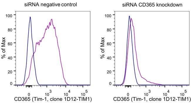 CD365 (TIM1) Mouse anti-Human, PE, Clone: 1D12-TIM1, eBioscience, Invitrogen
