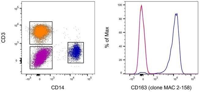 CD163 Mouse anti-Human, eFluor 450, Clone: MAC 2-158, Invitrogen  25 Tests;