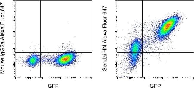 Sendai virus HN Mouse anti-Virus, Alexa Fluor 647, Clone: 1A6, Invitrogen™ 100 μg; Alexa Fluor™ 647 voir les résultats