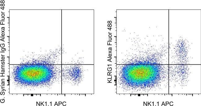 KLRG1 d'hamster syrien anti-souris, Alexa Fluor® 488, clone: 2F1, eBioscience™ 25μg; AlexaFluor® 488 voir les résultats