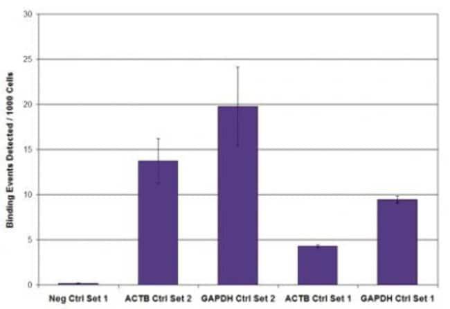 Phospho-RNA pol II CTD (Ser2) Rat anti-Human, Mouse, Clone: 3E10, Active