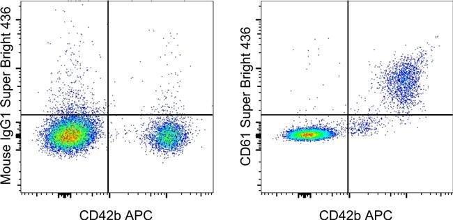 CD61 (Integrin beta3) Maus-anti-Pavian, Hund, Javaneraffe, Human, Rhesusaffe, Super Bright436, Klon: VI-PL2, eBioscience™ 100 Tests; Super Bright 436 Produkte