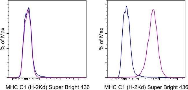 MHC KlasseI (H-2Kd) Maus Anti-Maus, Super Bright436, Klon: SF1-1.1.1, eBioscience™ 100 μg; Super Bright 436 Produkte