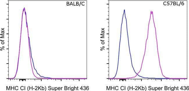 MHC Class I (H-2kb) Mouse anti-Mouse, Super Bright 436, Clone: AF6-88.5.5.3, eBioscience™, Invitrogen™ 25μg; Super Bright 436 Produkte