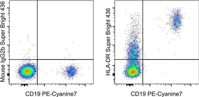 HLA-DR Maus Anti-Human, Super Bright436, Klon: LN3, eBioscience™ 25 Tests; Super Bright 436 Produkte