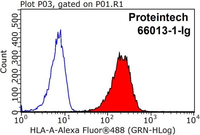 Hla Class I Abc Mouse Anti Human Porcine Clone 5c5b7 Proteintech 150 Ml Unconjugated Products Fisher Scientific