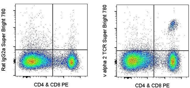 TCR V alpha 2 Ratte Anti-Maus, Super Bright 780, Klon: B20.1, eBioscience™ 25 μg; Super Bright 780 Produkte