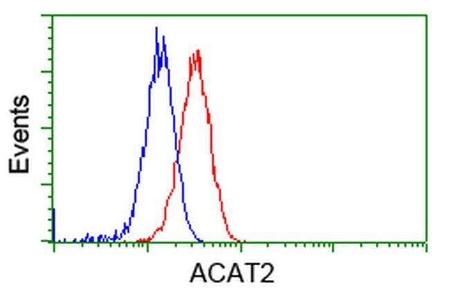 ACAT2 Mouse anti-Canine, Human, Rat, Clone: OTI5F7, liquid, TrueMAB  100