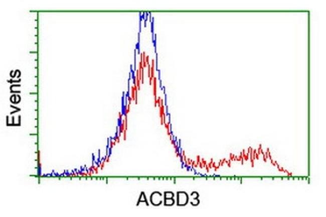 ACBD3 Mouse anti-Canine, Human, Rat, Clone: OTI3A1, liquid, TrueMAB  100