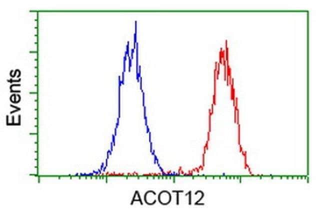 ACOT12 Mouse anti-Human, Clone: OTI1B9, liquid, TrueMAB  100 µL; Unconjugated