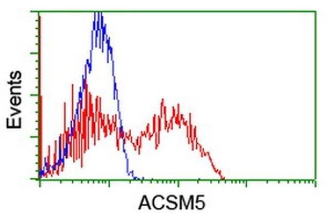 ACSM5 Mouse anti-Human, Clone: OTI4B11, liquid, TrueMAB  100 µL; Unconjugated