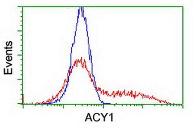 ACY1 Mouse anti-Canine, Human, Mouse, Rat, Clone: OTI2D3, liquid, TrueMAB