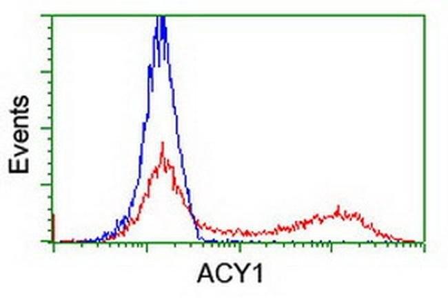 ACY1 Mouse anti-Human, Clone: OTI2B5, liquid, TrueMAB  100 µL; Unconjugated