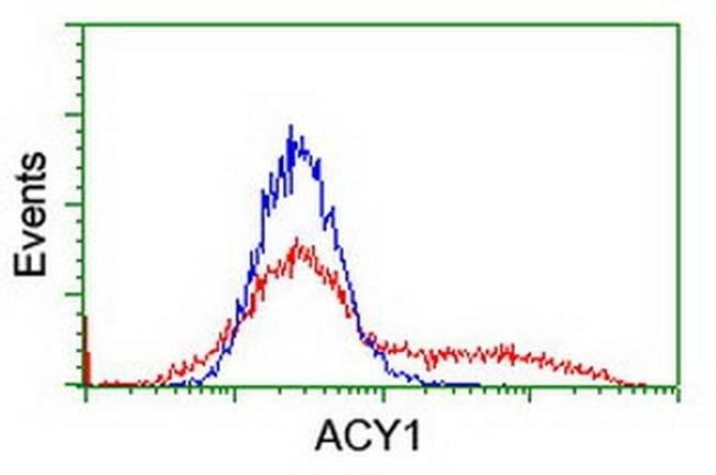 ACY1 Mouse anti-Canine, Human, Mouse, Rat, Clone: OTI1B12, liquid, TrueMAB