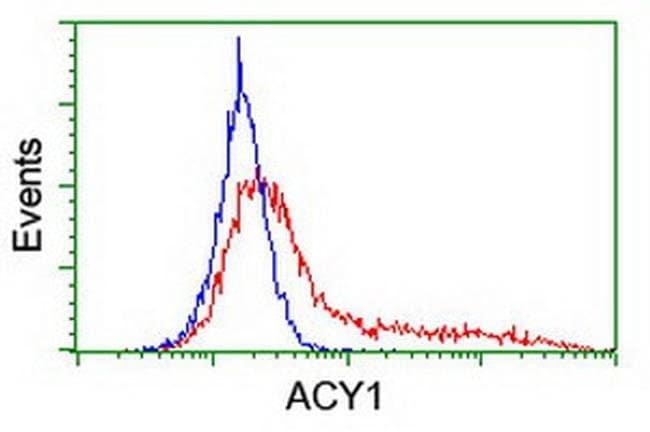 ACY1 Mouse anti-Human, Clone: OTI1H9, liquid, TrueMAB  100 µL; Unconjugated