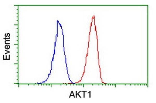AKT1 Mouse anti-Canine, Human, Mouse, Rat, Clone: OTI3E3, liquid, TrueMAB