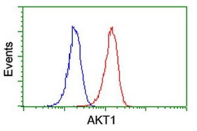 AKT1 Mouse anti-Canine, Human, Mouse, Rat, Clone: OTI4G4, liquid, TrueMAB